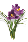 Crocus Knitted Flower